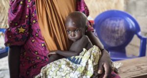 Famine looms in northern Nigeria