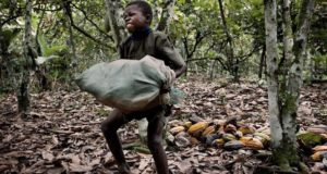 child-labour